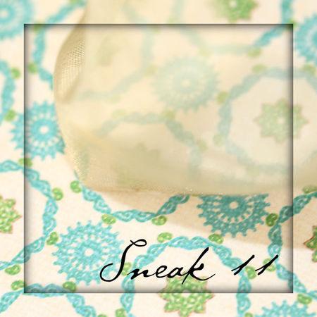 Sneak11blog