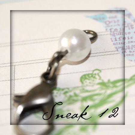 Sneak12blog